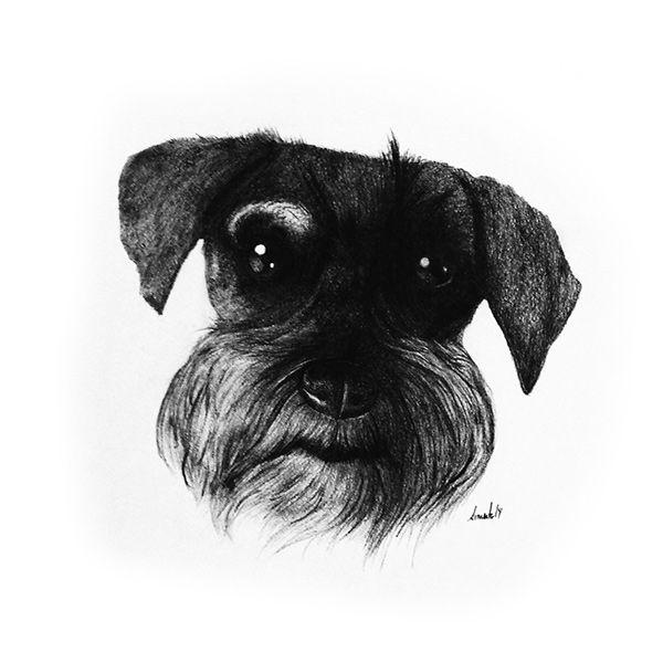 Dog Series on Behance