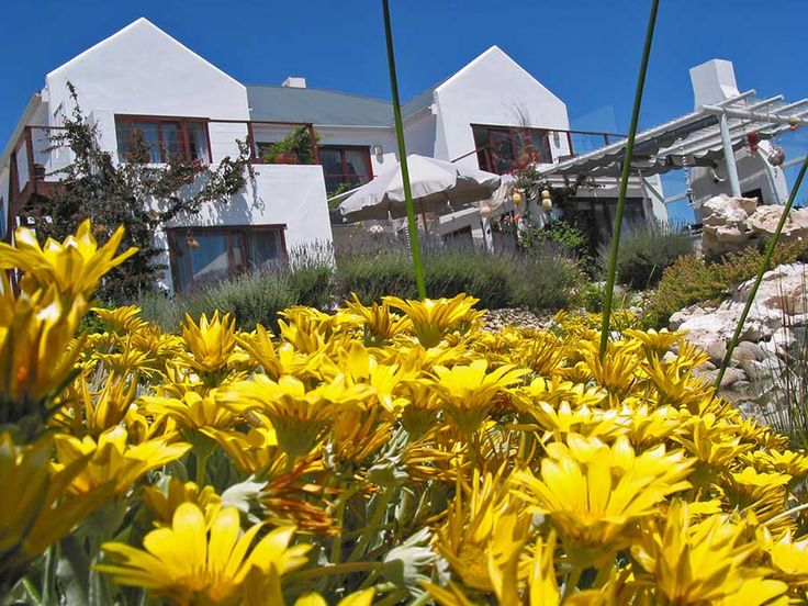 Welcome at comfortable Guesthouse Farr Out at outskirts of Paternoster