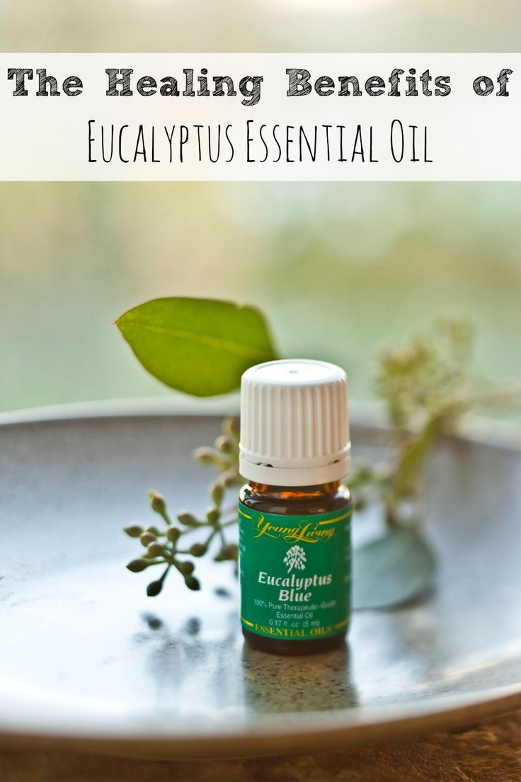 The Healing Benefits of Eucalyptus Essential Oil