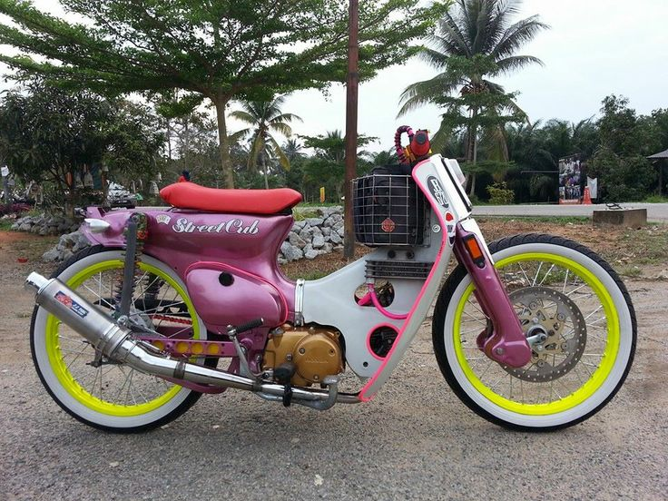 Street Cub From Malaysia