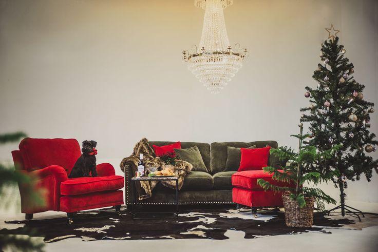 Röd sammetsfåtölj Lejonet howard. Fåtölj, sammet, röd, mässing hjul. Valen sammetssoffa, grön, nitar, guld, låg, djup. Kristallkrona, lampa, koskinn, matta, marmorbord, brunt, brun, marmor, bord, soffbord, möbler, inredning, vardagsrum.