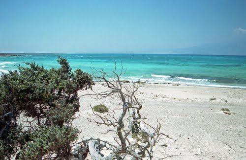 Kreta-Chrissi island. 8 km buiten Ierapetra in d Lybische Zee. Vulkanisch gesteente, witte zandstranden en mooie riffen dus snorkelen!