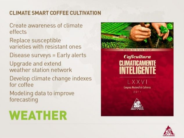Climate Smart Coffee Cultivations