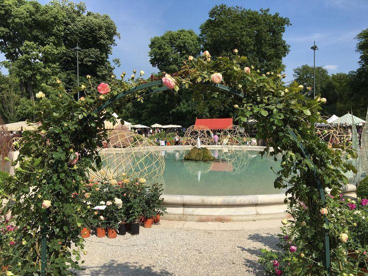 #giardinipubbliciindromontanelli #milano #milan #orticola2016 #rose #roses #fontana #fountain by essecimilano