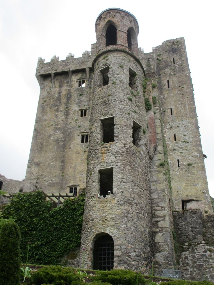Red and Bull climbed all the way to the top of the Blarney Castle to kiss the stone