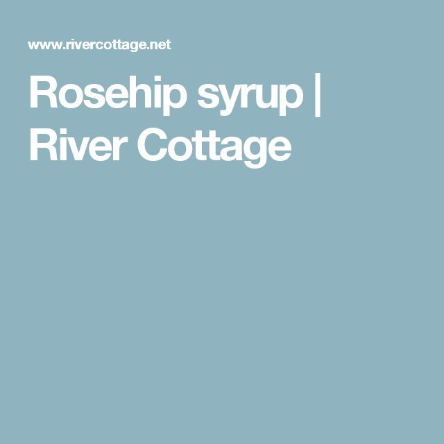 Rosehip syrup | River Cottage