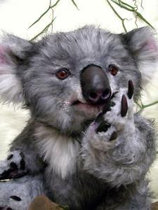 """Realistic OOAK (16.5"""") koala teddy bear """"Mofli"""""""