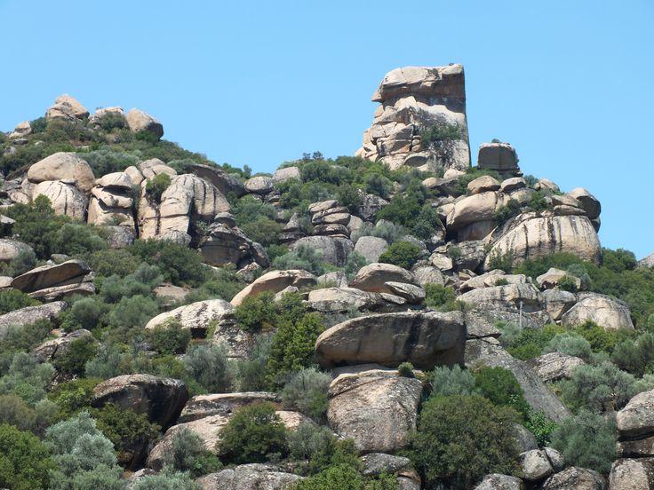 Aydın / Çine - Fosil Kayaları