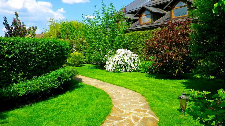 Прямая дорожка делает участок визуально меньше. Поэтому ландшафтные архитекторы рекомендуют в небольших садах мостить извилистые дорожки. Они искажают перспективу, делают пространство визуально шире, даже создают некую интригу.