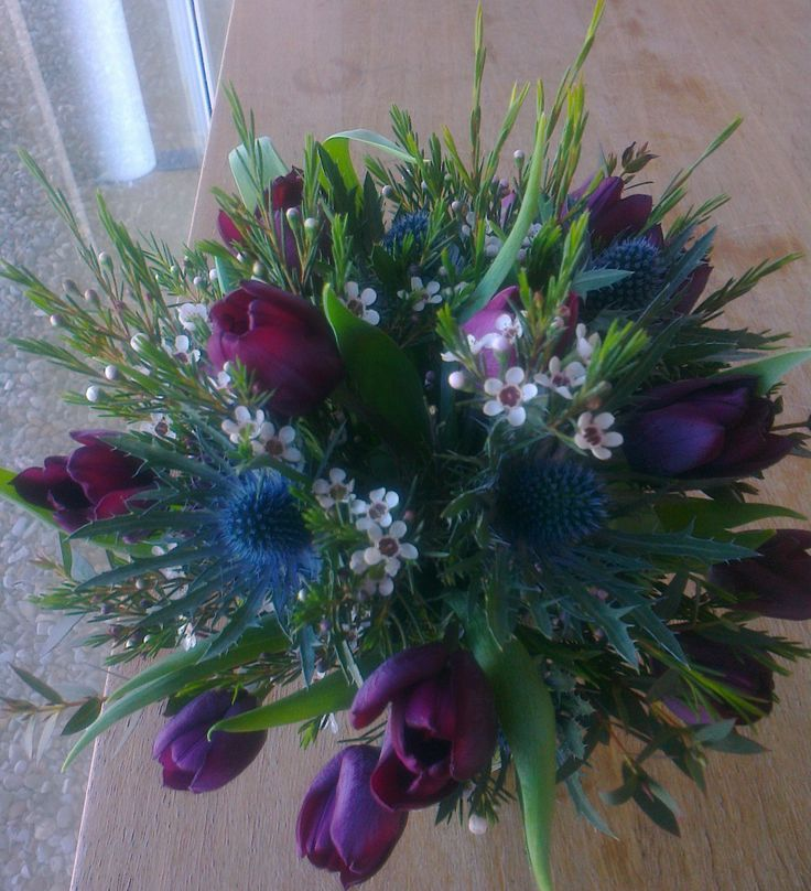 gorgeous deep purple tulips with thistles and wax flowers