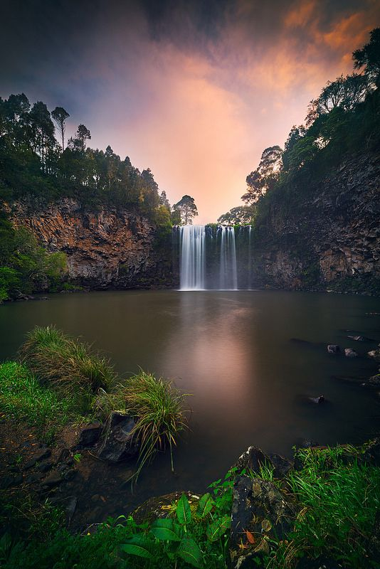 Dangar Falls at Dorrigo National Park, near Dorrigo, NSW, Australia | by Wolongshan~~