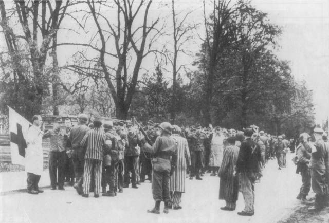 Germans soldiers lined up to be shot by US troops at Dachau, 1945.