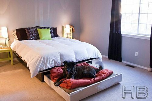dog bed that pulls out and is easily stowed away under the mattress. this would be perfect!Dogs Beds, Ideas, Pets Beds, Dogs Trundle, Dog Beds, House, Bedrooms, Trundle Beds, Animal