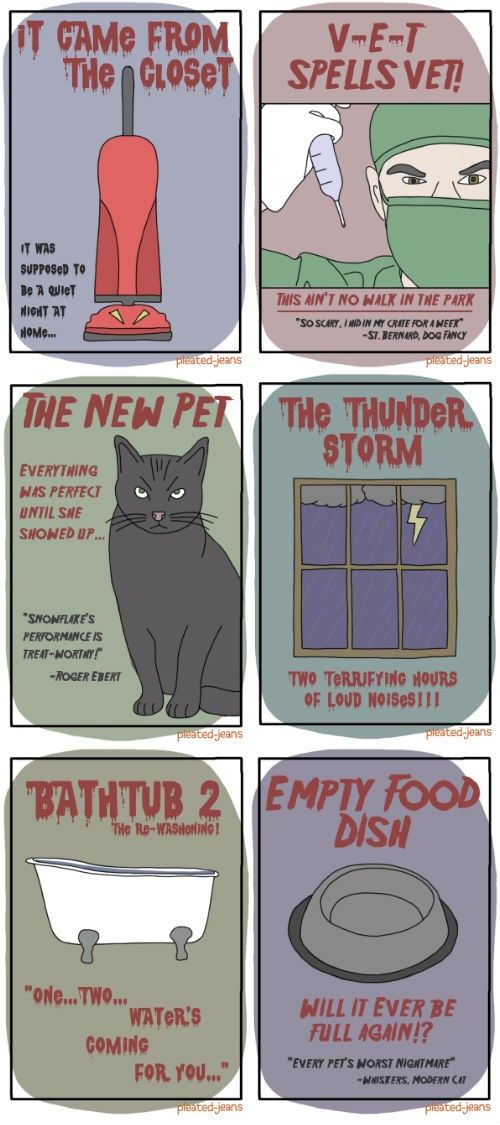 "Horror Movies for Pets  @Katelin Campbell  Puki's scariest horror movie is a tie between ""It Came From the Closet"" and ""Empty Food Dish"" (with ""The New Pet"" following closely behind, lol)"