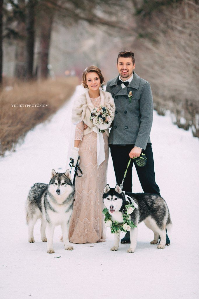 Bridal gown - Eirene by Alya Bolshova atelier (Russia) Winter wedding — Wedding Outlet — Салон свадебных платьев г. Санкт-Петербург