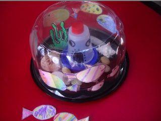Recycle Plastic Container Aquarium Model Too Cool For