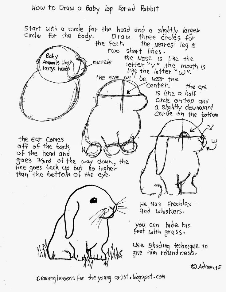 Printables Draw Art Transformations Free Worksheet 1000 images about art step by picturesdrawing and how to draw worksheets for the young artist a babyrabbit free