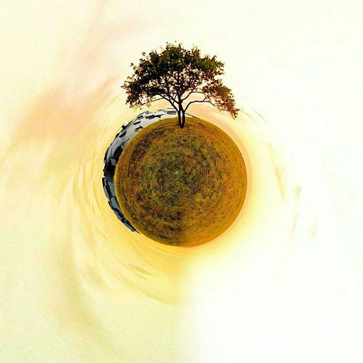 «#tinyplanet #madewithmeld #tree #nature #rsa_graphics»
