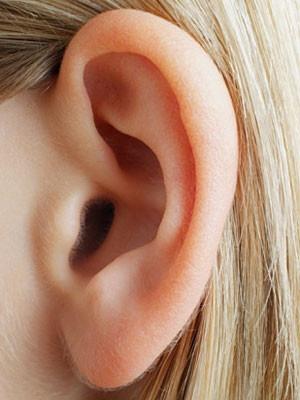 Does Ear Stapling Work? | Diet Ideas | Pinterest | Posts ...