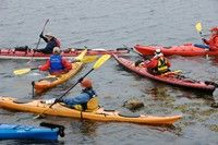 Peggy's Cove Coastal Region: Kayaking Adventures, Whale Watching, Birding Activities, Golf Courses and Pristine Beaches
