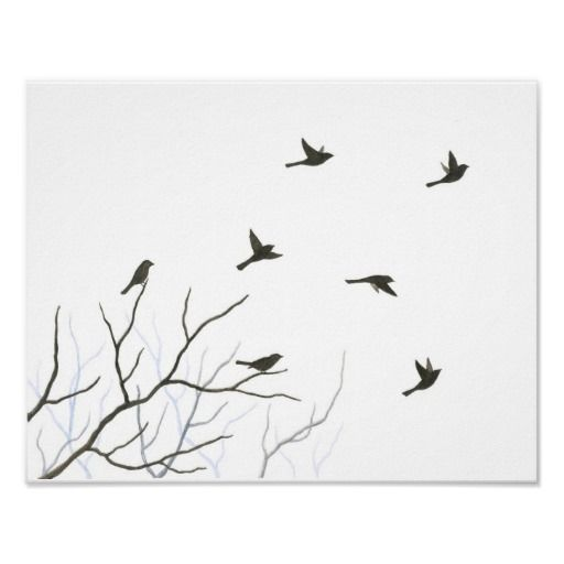 Flying Birds Silhouette Fine Art Print