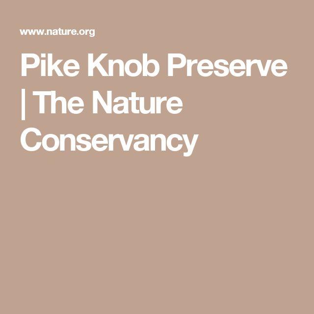 Pike Knob Preserve | The Nature Conservancy