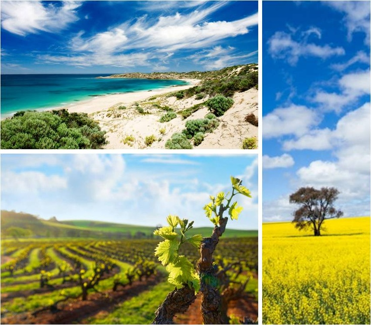 A Perfect Blend of #SouthAustralia #travel #Australia