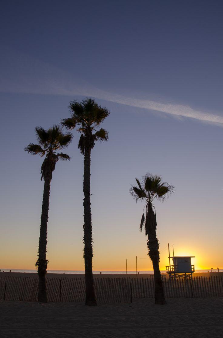 lonely palm trees at santa monica beach   santamonica  sunset   PalmerasSanta MonicaSolitarioPalmasPuestas De Sol. 20 mejores im genes de Shahad happy en Pinterest   Feliz  Fondos