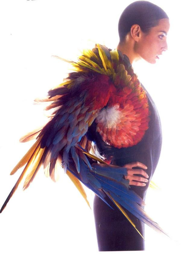 Jean Paul Gaultier & Plumassiere Nelly Saunier - via @Kenny Milano #idemtikosay pura fantasia !!!--this would be a different way to get the look of wings