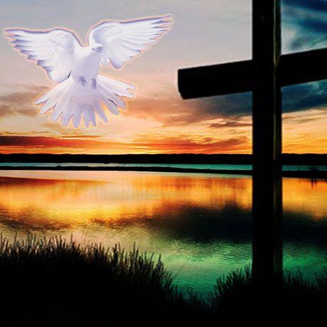 Die ENIG- VERLATE Seun van God
