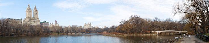 New York City Central Park Footsteps HD desktop wallpaper High