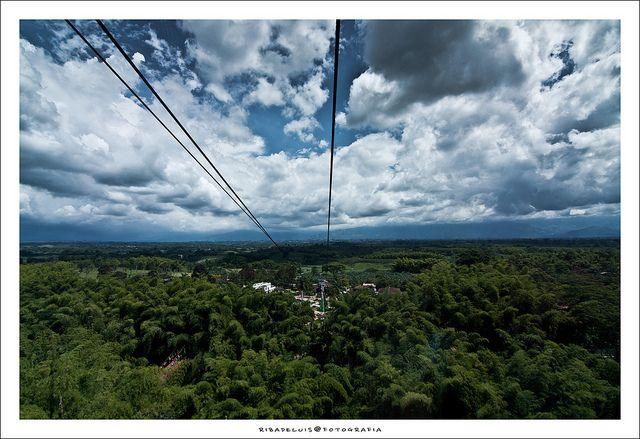 Al ingreso del parque, se encuentra un impresionante mirador con 22 metros de altura el cual recibe a los turistas que vienen a este lugar con aroma de café. Desde este encaramado lugar se pueden ver el parque y una espectacular vista del Departamento del Quindio.
