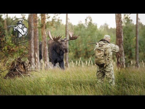 The most AMAZING Deer Hunting Video EVER!!! HD - YouTube