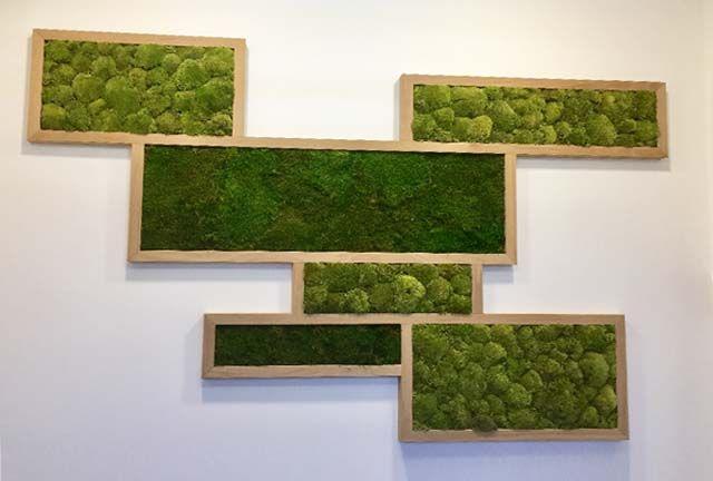 16++ Framed moss wall art inspirations