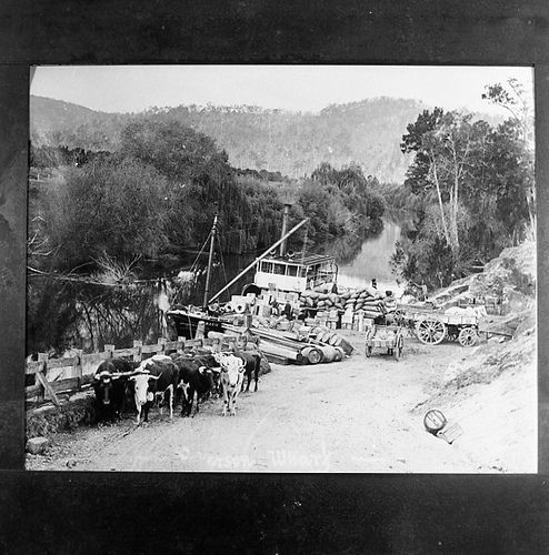 https://flic.kr/p/aCQtXL | Ship at wharf below Paterson Bridge, Paterson, NSW, Australia, ca. 1800's, before the railway (copy from Weston's photograph) | Source: livinghistories.newcastle.edu.au/nodes/view/14659  This image was scanned from a film negative in the Athel D'Ombrain collection [Box Folder B10399] held by Cultural Collections at the University of Newcastle, NSW, Australia.  This image can be used for study and personal research purposes.  If you wish to reproduce this image for…