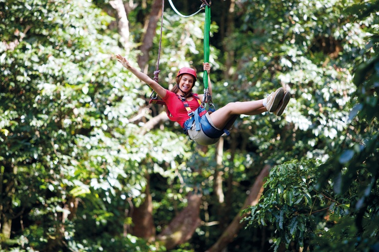 Fly through the canopy of the majestic Daintree Rainforest on a giant flying fox AKA Jungle Surfing. #junglesurfing #tropicalnorth