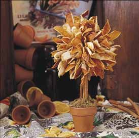 instruction to make a dried orange peel topiary; a different kind of centerpiece could be used year round