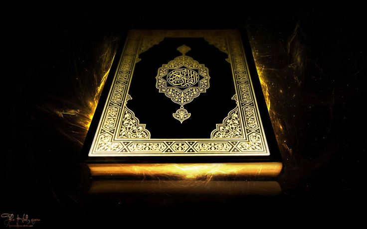 Online Quran Academy https://slashdot.org/journal/2623307/what-online-quran-academies-institutes-are-offering-us