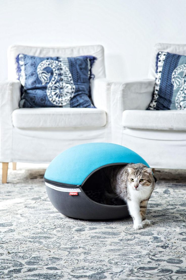 IBIYAYA Pet Bed Got all the gift for your family already? how about your pet?   ibiyaya.com