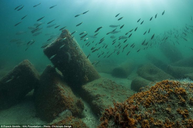 Sleeping with the fishes: Huge columns lay underwater in the ruins of Canopus, which were ...