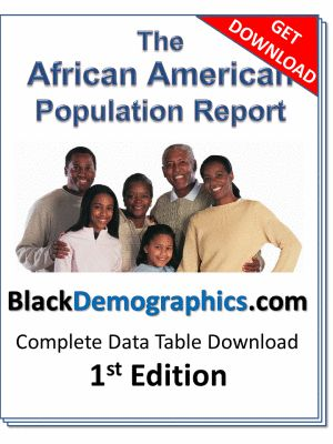 african americans and the criminal justice Racial justice print email read more  people were intellectually and morally superior to african americans  and abuse of power wielded by our contemporary.