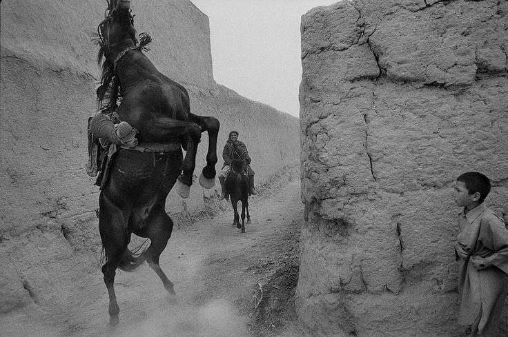 james nachtwey - Horse