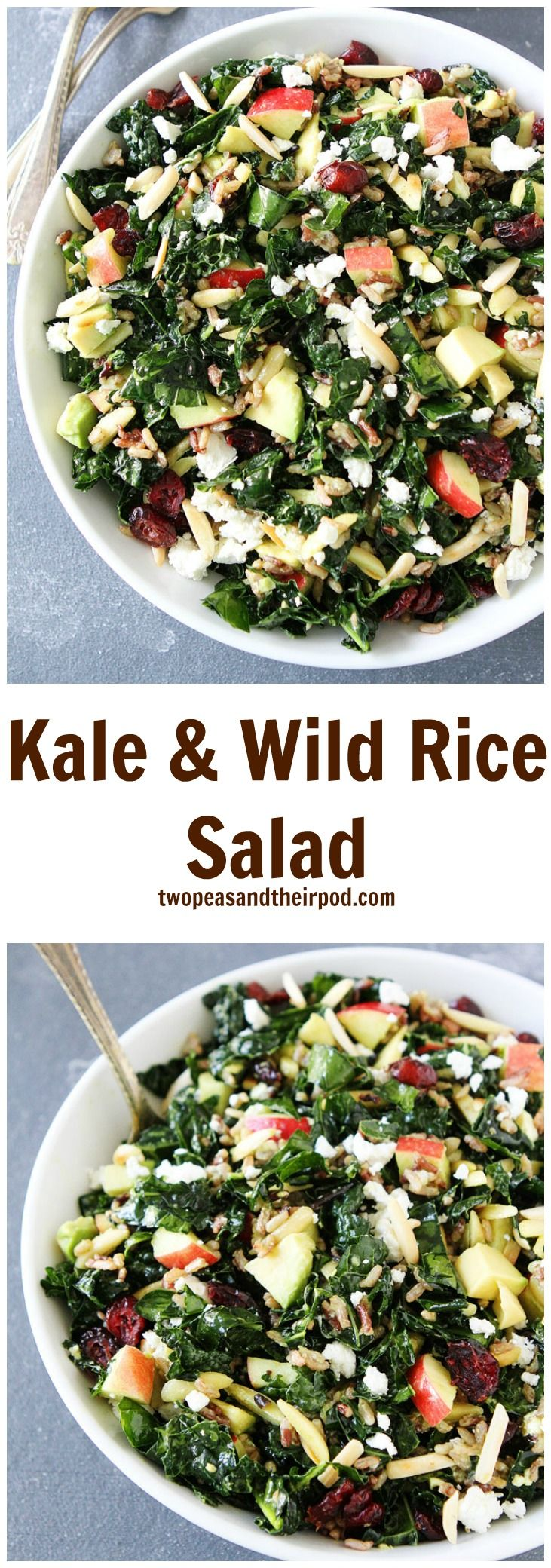 Kale and Wild Rice Salad Recipe on twopeasandtheirpod.com This kale salad is FULL of flavor! It has apples, dried cranberries, almonds, wild rice, goat cheese, avocado, and the BEST lemon basil dressing! Everyone that tries this salad LOVES it!