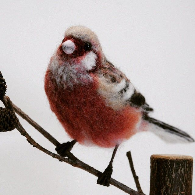 ベニマシコ(紅猿子) #ベニマシコ#羊毛フェルト#フェルト#ニードル#ハンドメイド#野鳥#鳥 #Uragus sibiricus#needlefelting#felting#wool#handmade#work#wild bird#bird