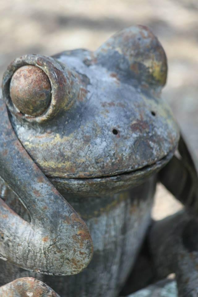 Rusty frog <3