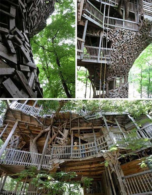 tree house worlds largest tree house - Biggest Treehouse In The World 2013