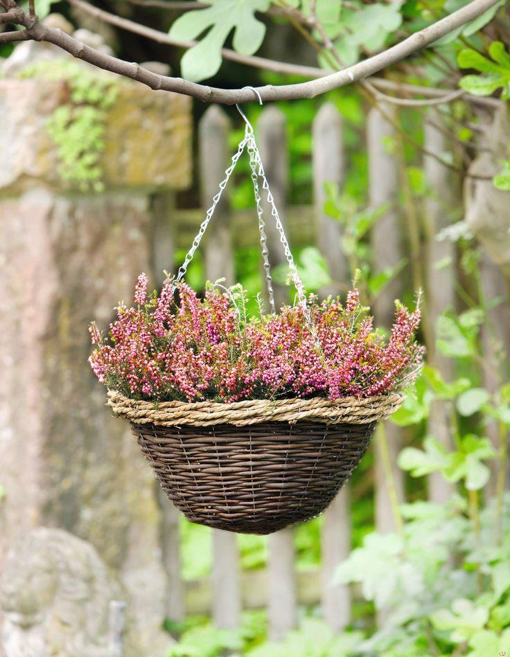 14 besten Pflanzgefäße \ Rankhilfen Bilder auf Pinterest - mein garten rtl