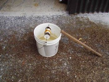 5 Gallon Bucket mouse trap: just set one of these, hope it works!!