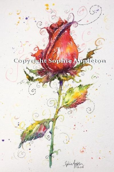 Red rose painting by Artist Sophie Appleton www.sixfootsophie.co.uk