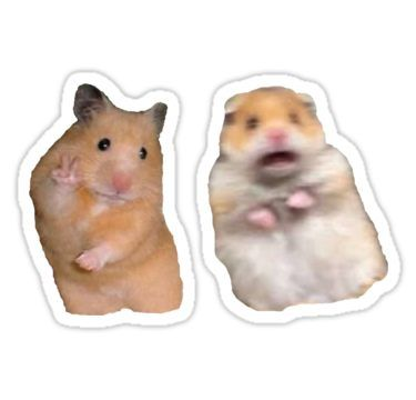 'Peace Sign and Screaming Hamster' Sticker by madisonbaber
